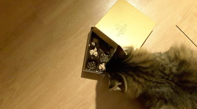 Le tuto de Noël : ne jetez plus vos boites de chocolats!