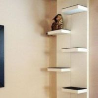 culture-chat-etagere