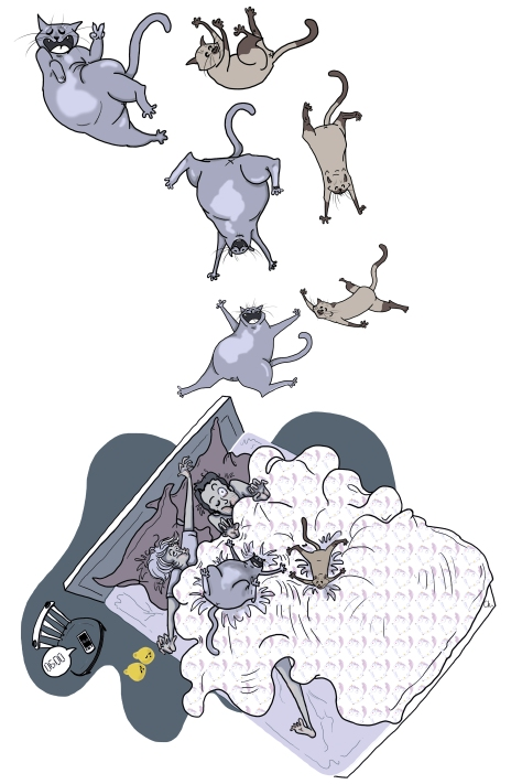 raining-cats